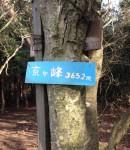 京ヶ峰に登る。